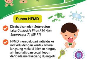 Hasil carian imej untuk hfmd